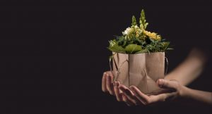 nachhaltig investieren reward-based crowdfunding